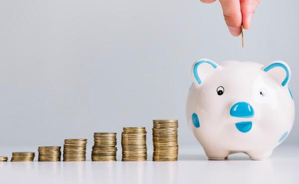 Money Insurance piggy-bank